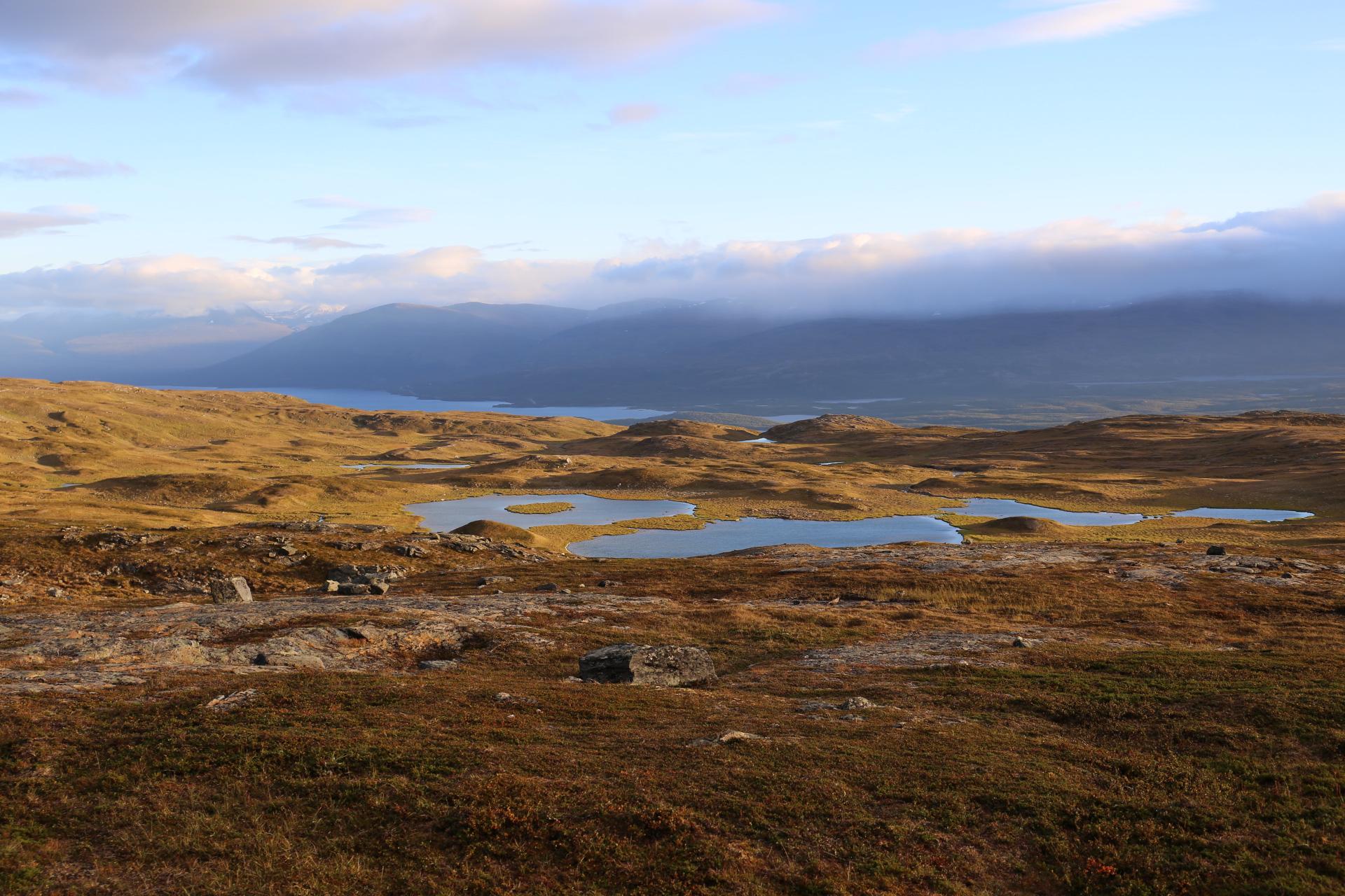 Norge i gult och Sverige i blått