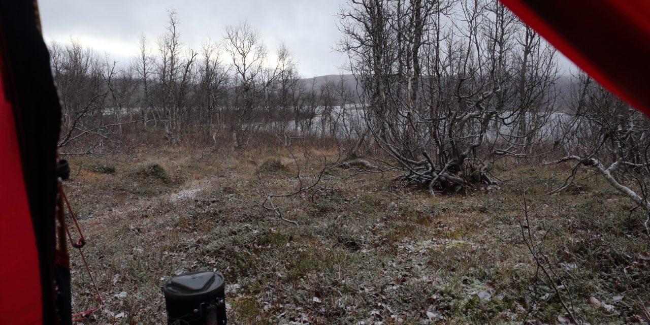 Dag 51: En gammal samisk boplats