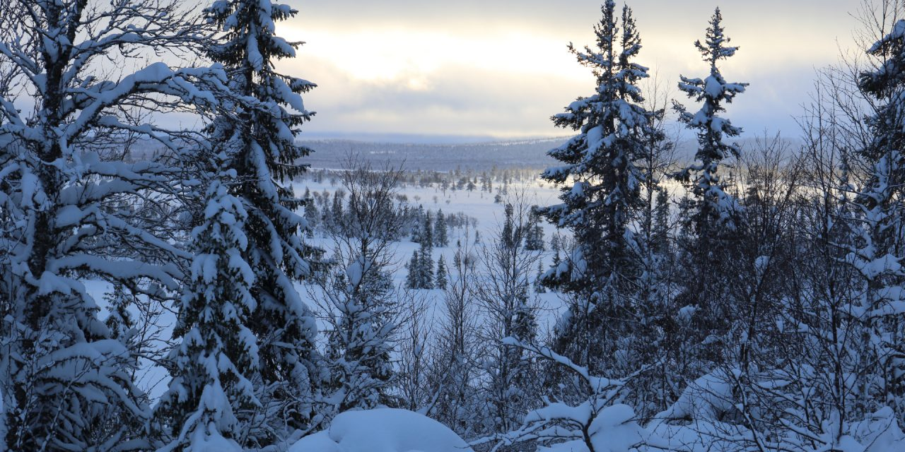Dag 94: Sveriges högst belägna by