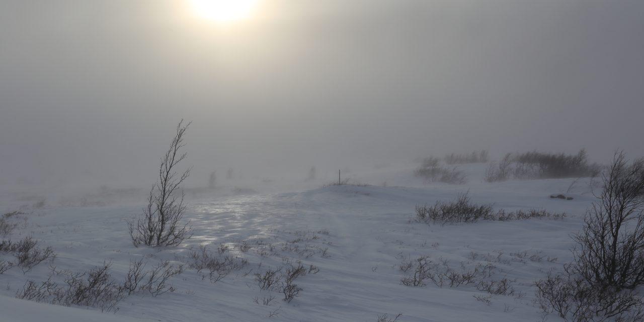 Dag 78: Genom vindpackad snö mot Ullådalen